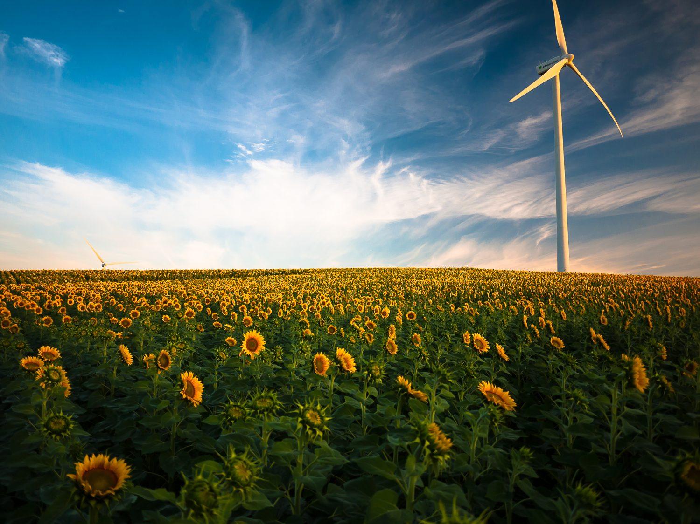 EnArgus : un portail pour améliorer la visibilité de la recherche dans le domaine de l'énergie