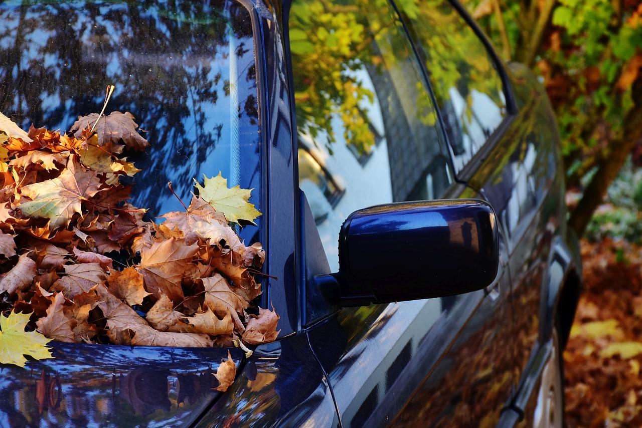 Peinture #automobile #écologique auto réparatrice à base d'amidon de maïs