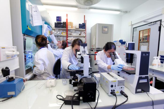 L'#Immunothérapie pour combattre le cancer ?