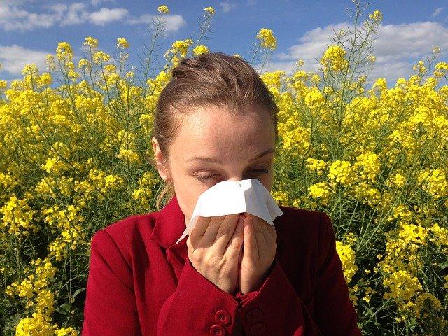 L'exposition au pollen augmente les risques d'infection au SARS-CoV-2, selon une étude de la TUM